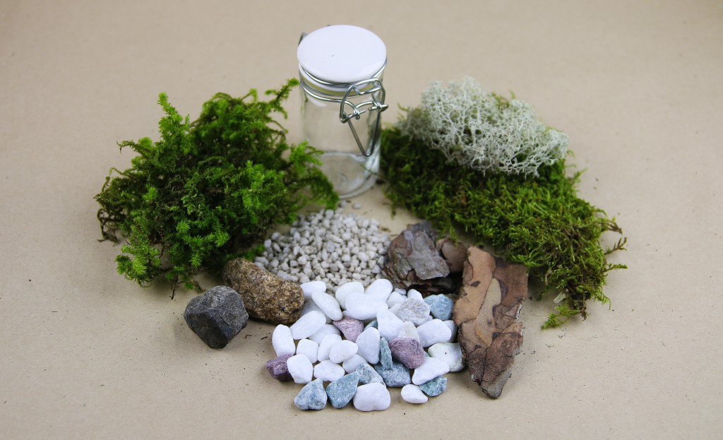 miniterrarium ingredienser