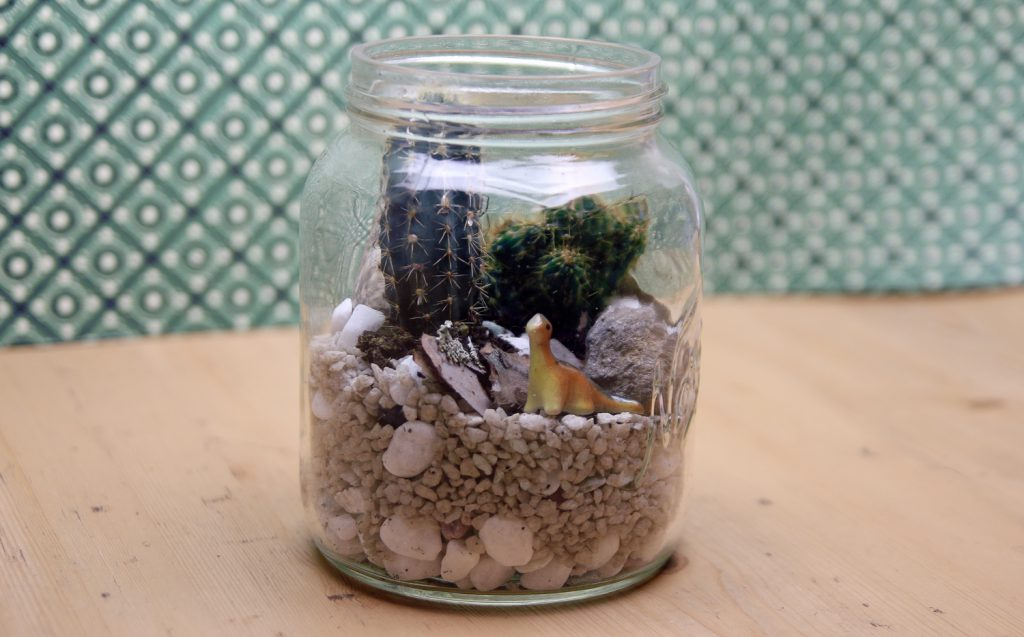 kakktusterrarium-2-lite