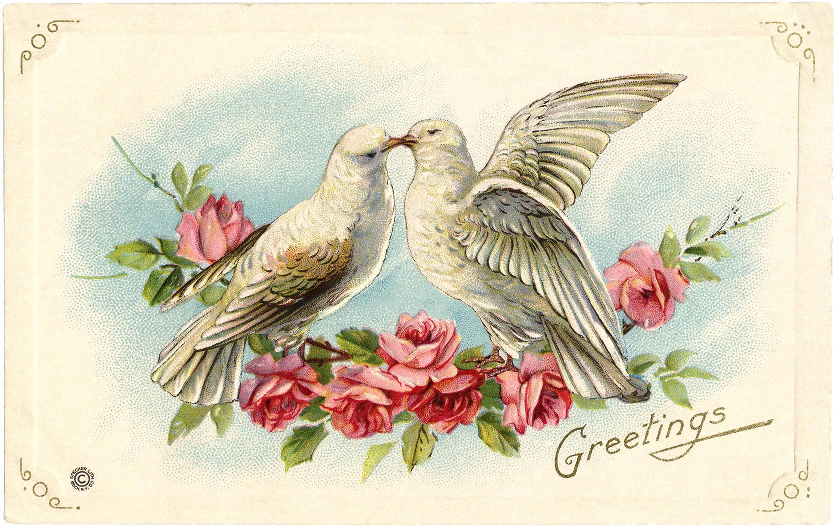 Duer OG roser på ett og samme postkort. Klassisk og romantisk!
