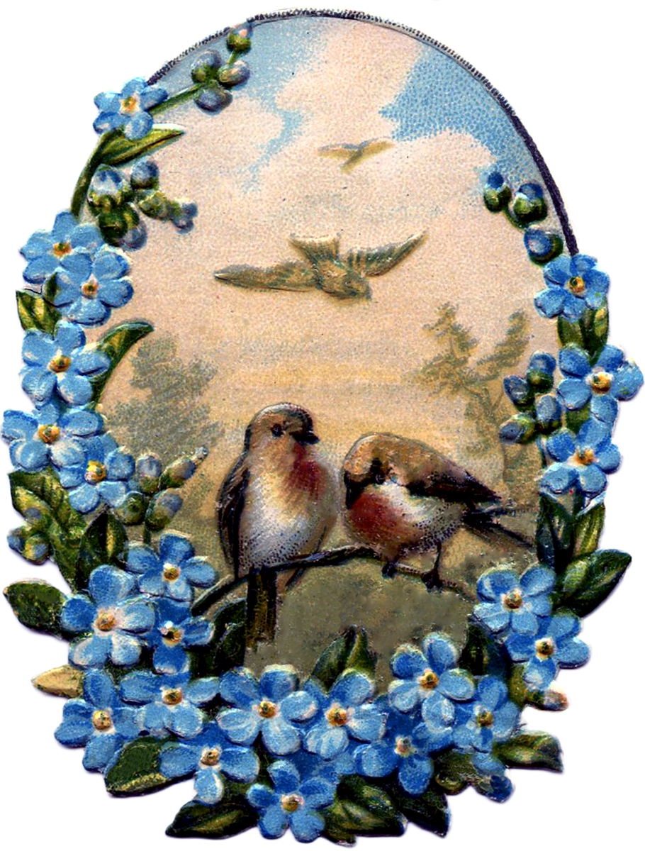 Birds-with-Forget-Me-Nots-GraphicsFairy