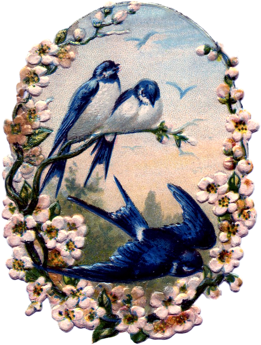 Vintage-Birds-with-Flowers-Scrap-GraphicsFairy